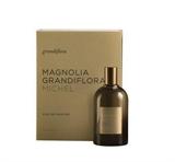 Magnolia Grandiflora Michel